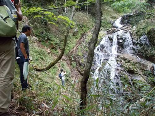 14見事な滝1.jpg